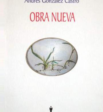 Obra nueva (Colòmbia)