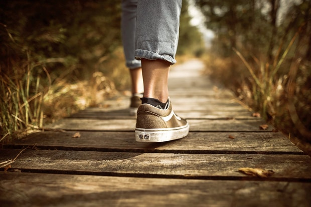 """""""El camí que no vaig agafar"""", de Robert Frost"""